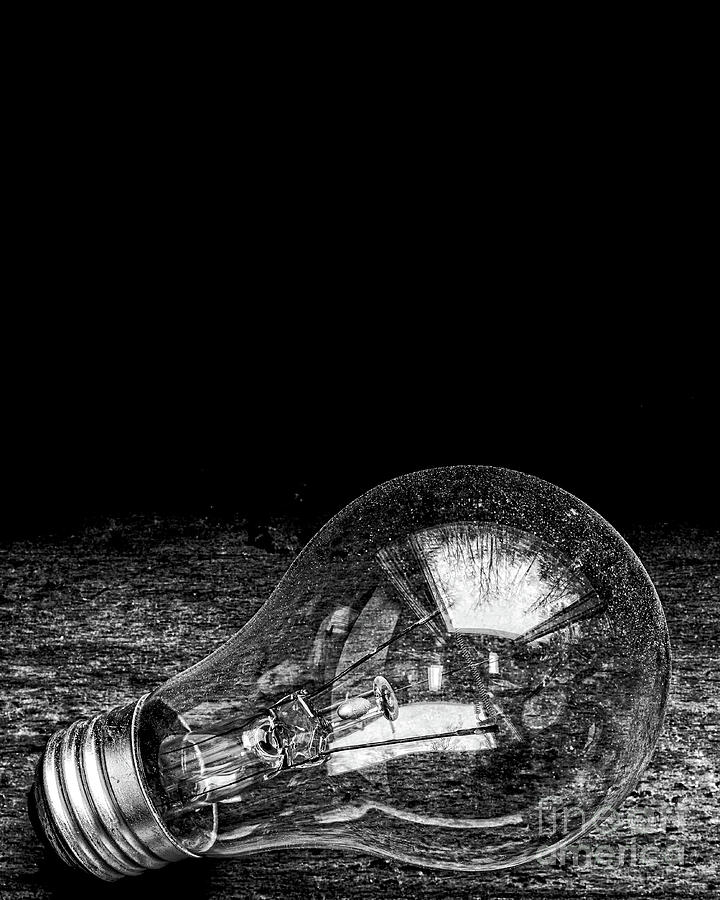 Light Photograph - Lightbulb Black And White by Edward Fielding