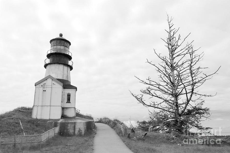 Lighthouse and Tree Lean In BW by Carol Groenen