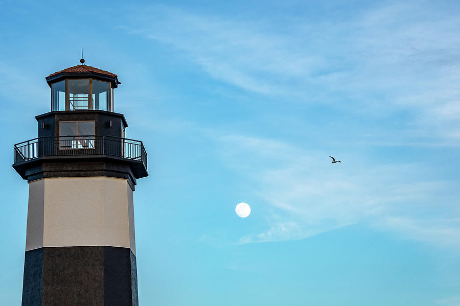 Lighthouse Moon by Ree Reid