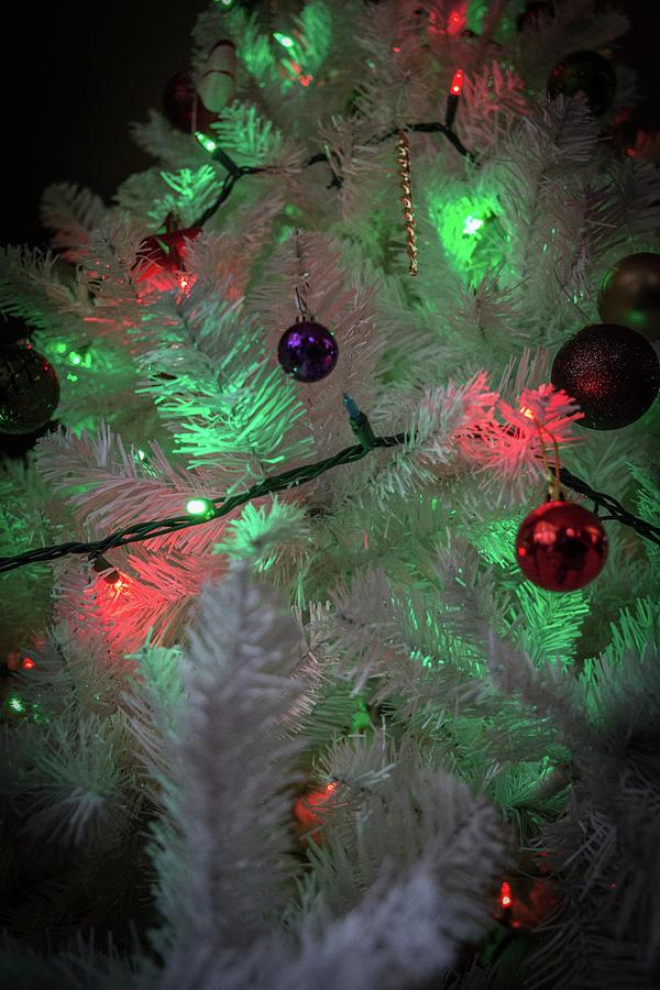 Lights by Mark Salamon