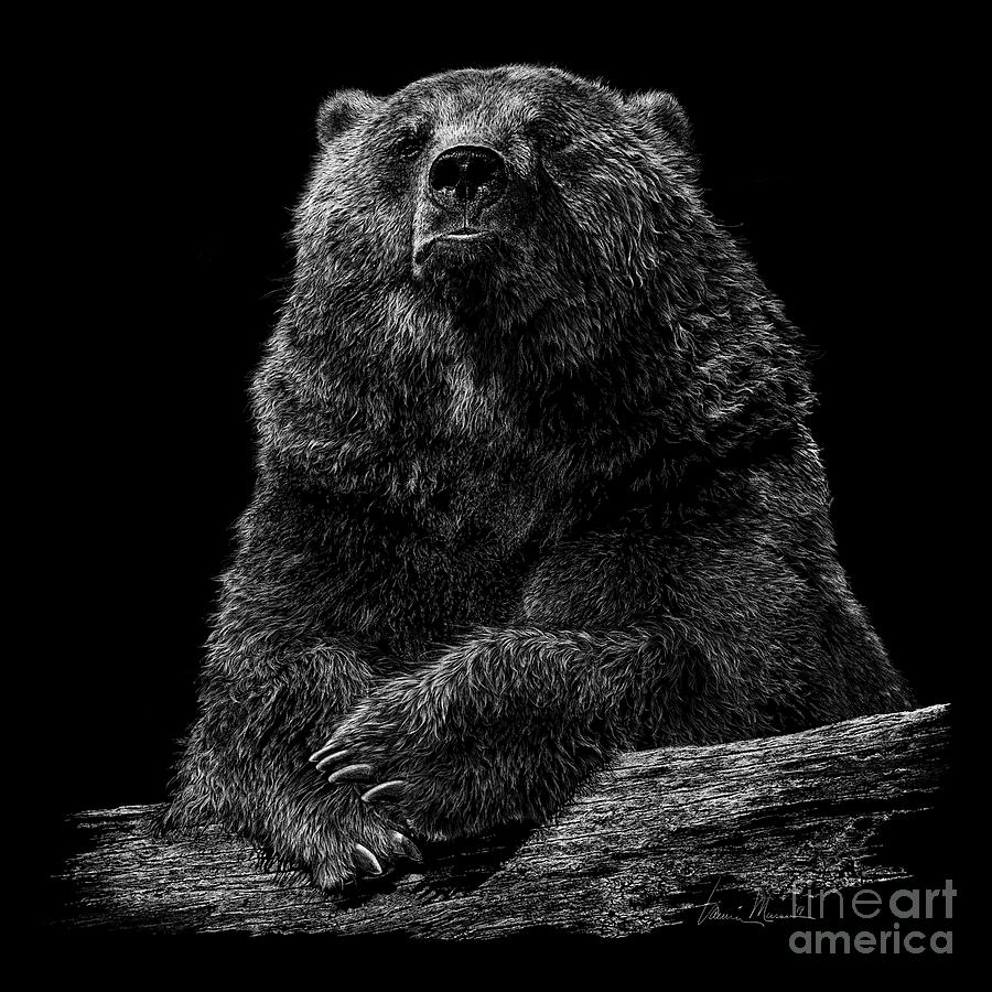 Bear Drawing - Like A Bear by Laurie Musser