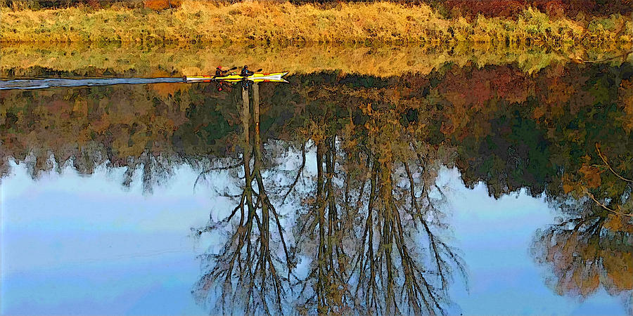 Like a Mirror by Robert Bissett