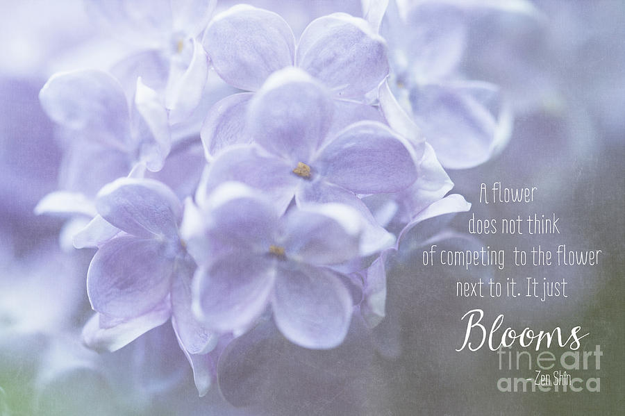 Lilac Blooms with Quote by Anita Pollak