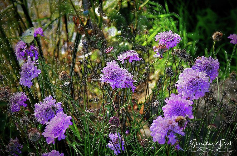 Lilac Jelly Pincushion by Lance Sheridan-Peel