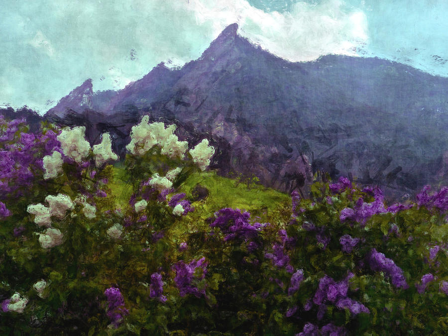 Lilacs and Flatirons by George Tuffy