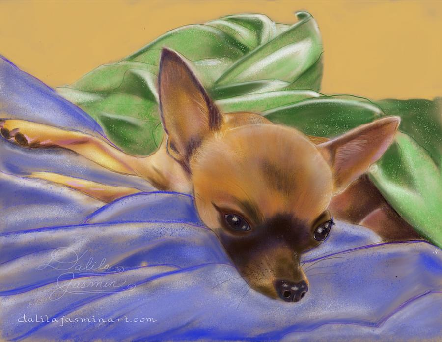 Chihuahua Digital Art - Lilly by Dalila Jasmin
