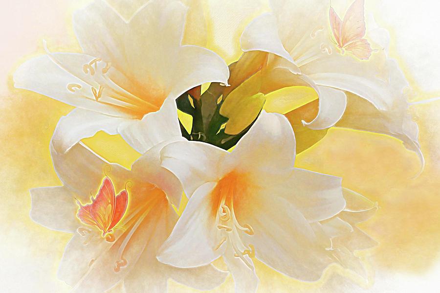 Flowers Digital Art - Lilly by Jasmina Seidl