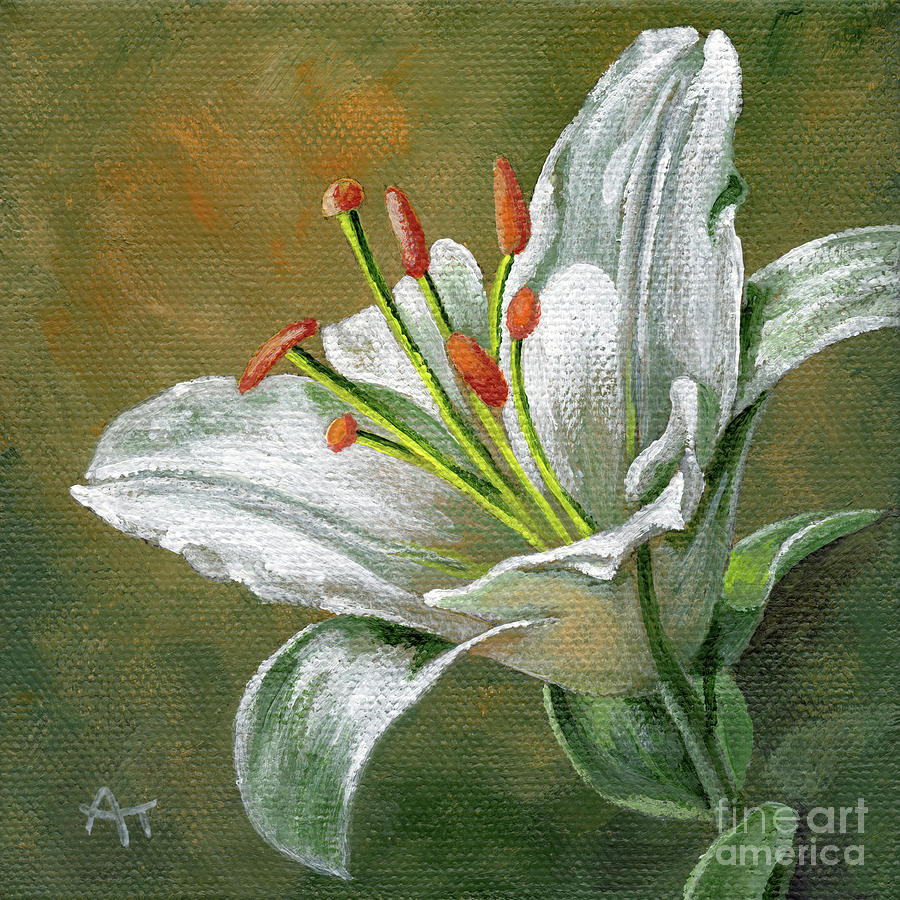 Lily White Flower - right by Annie Troe