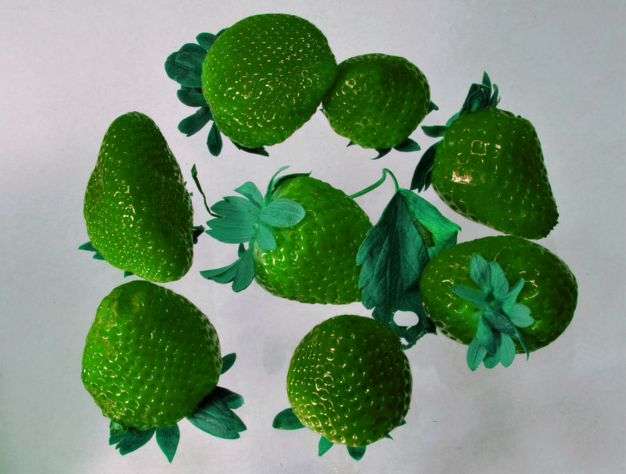 Lime Photograph - Lime Strawberries by Tom Kelly