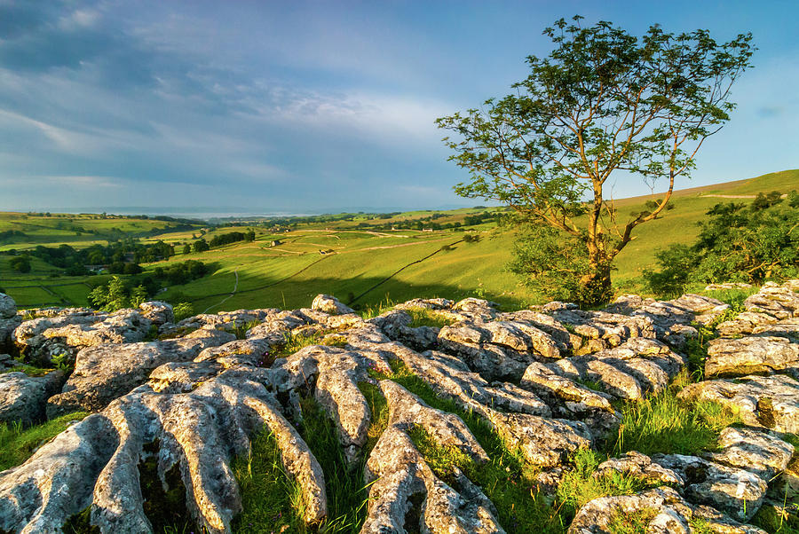 Malham Photograph - Limestone Pavement, Malham Cove by David Ross