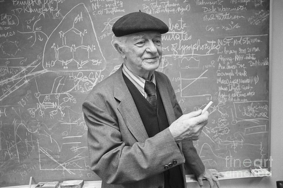 Linus Pauling At Blackboard Photograph by Bettmann