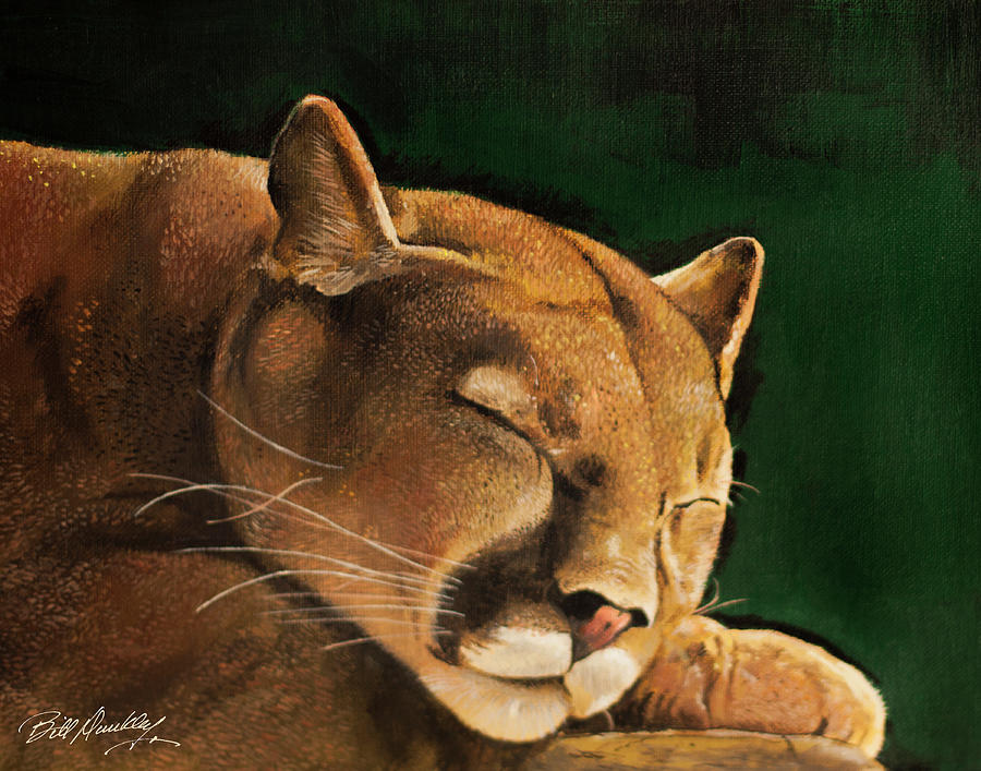 Lion at Rest by Bill Dunkley