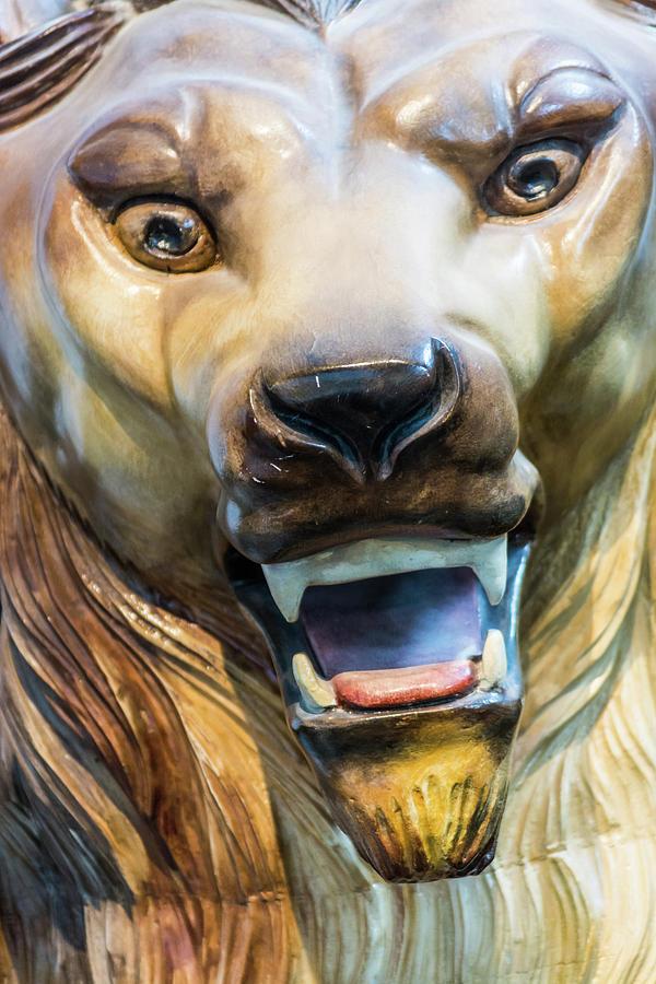 Lion Fun by Stewart Helberg