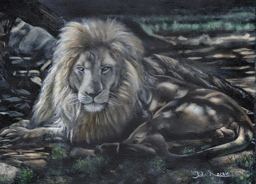 Lion in Dappled Shade by John Neeve