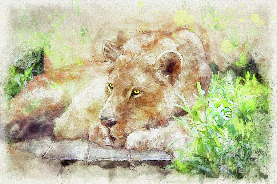 Lioness by Lois Bryan
