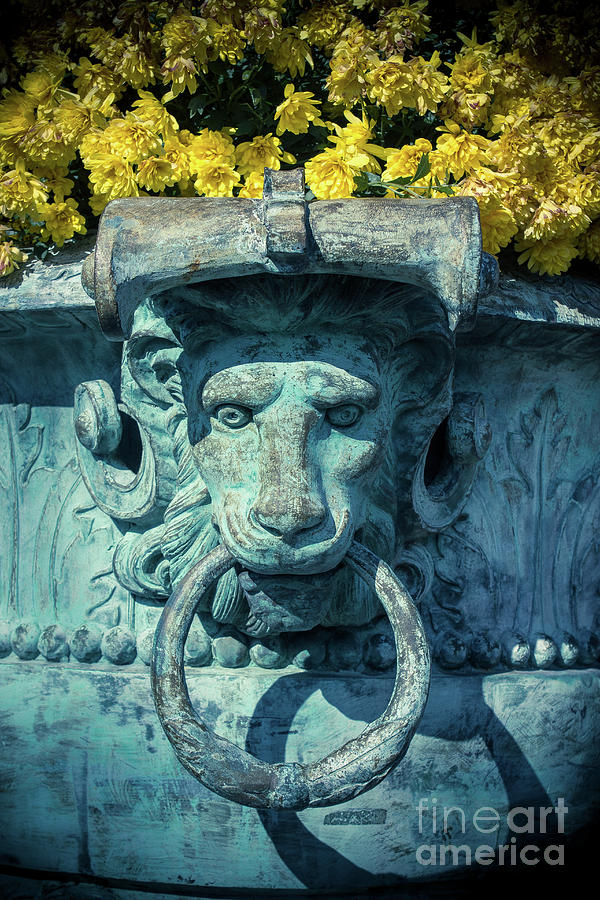 Lion Photograph -  Lions Head On Flower Planter by Colleen Kammerer