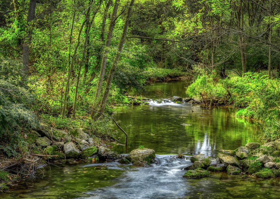 Little Cedar Creek in Trexler Memorial Park by Jason Fink
