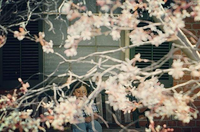 Little Gift of Spring by The Art Of Marilyn Ridoutt-Greene