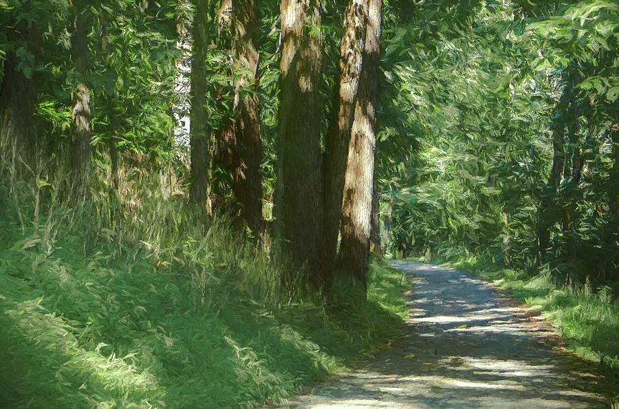 Little Lehigh Parkway Path by Jason Fink