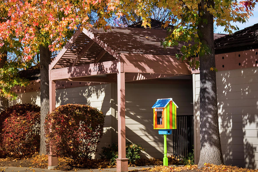 Little Library 2 by Mark Mille