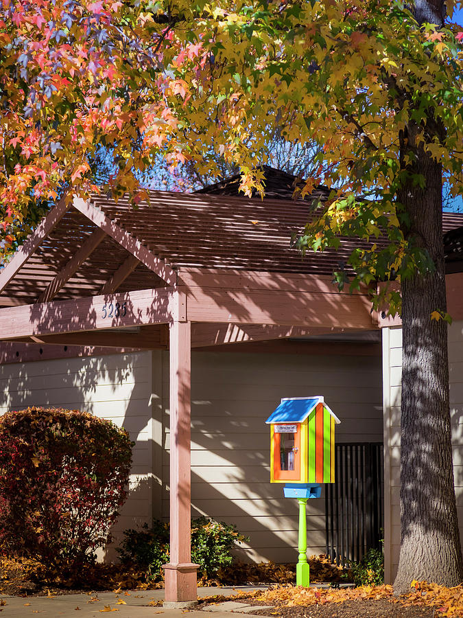 Little Library by Mark Mille