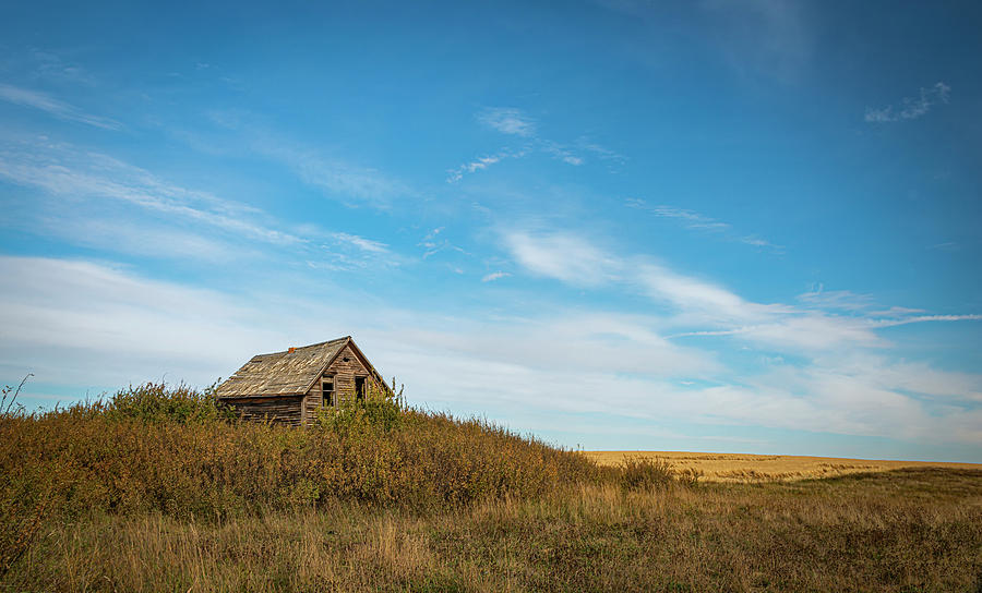 Little Old House on the Prairie by Philip Rispin
