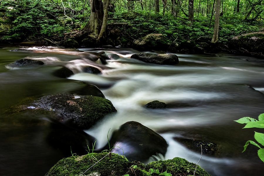 Little Wolf River Rapids by Neal Nealis