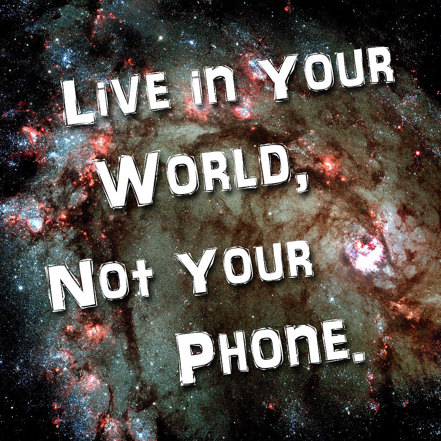 Live In Your World Not Your Phone 1 by Bill Swartwout Photography