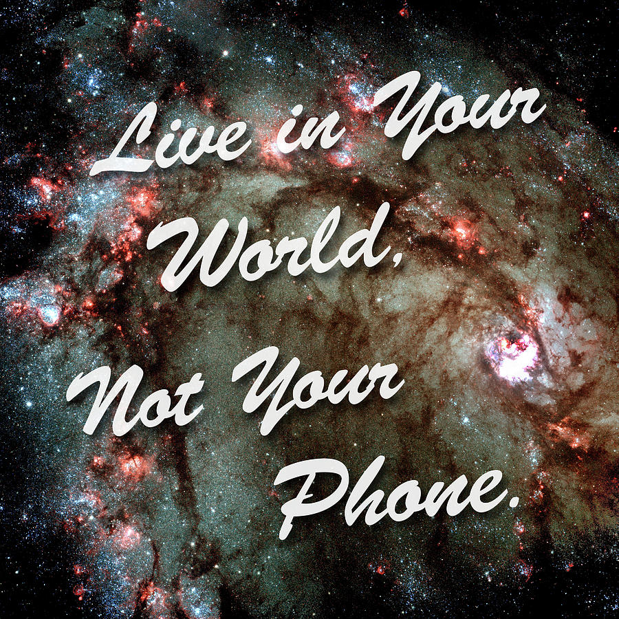 Live In Your World Not Your Phone 2 by Bill Swartwout Photography