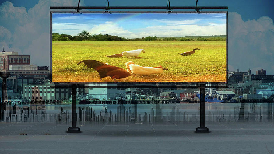Living without Walls-Billboard by Mike Breau