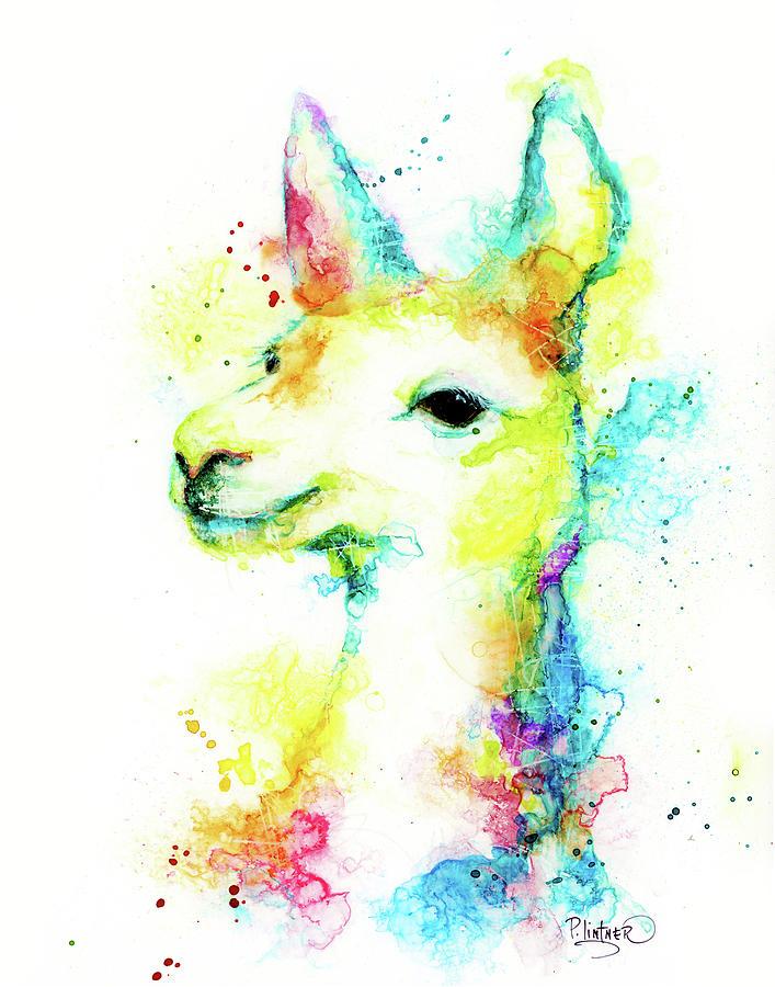 Llama by Patricia Lintner