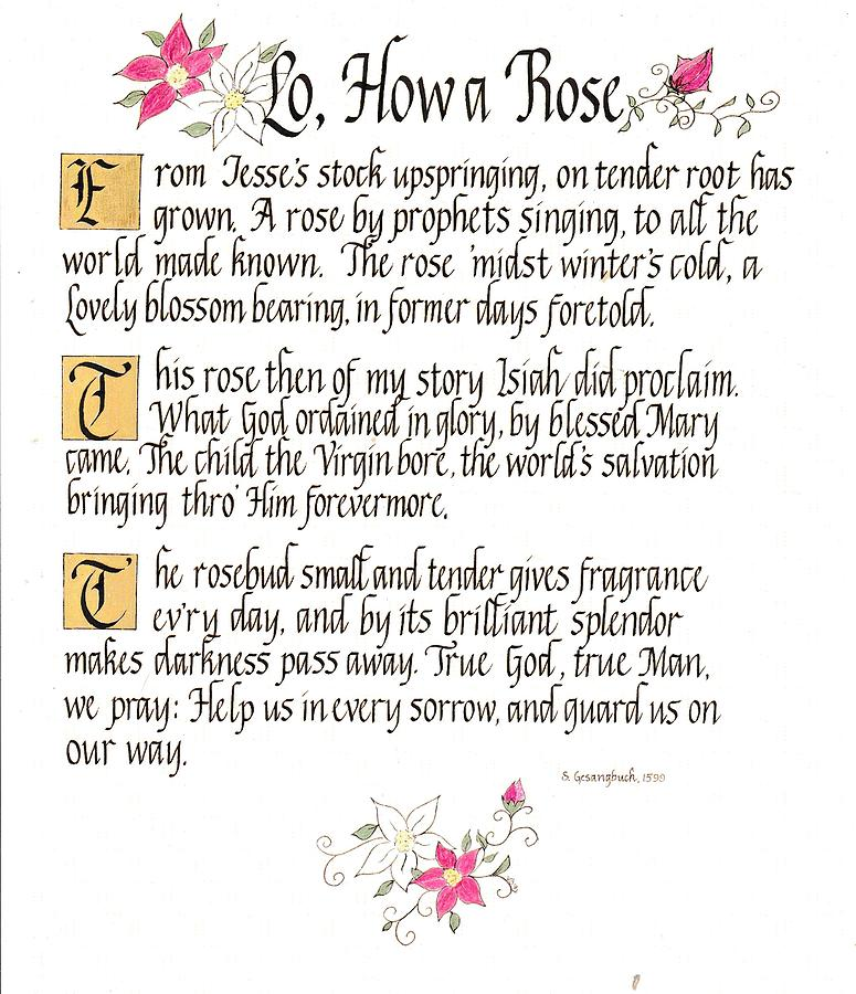 Lo, How a Rose by Valerie Bassett