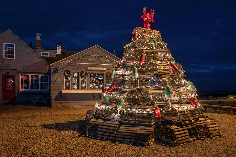 Lobster Pot Tree - Nubble Light Maine by Joann Vitali