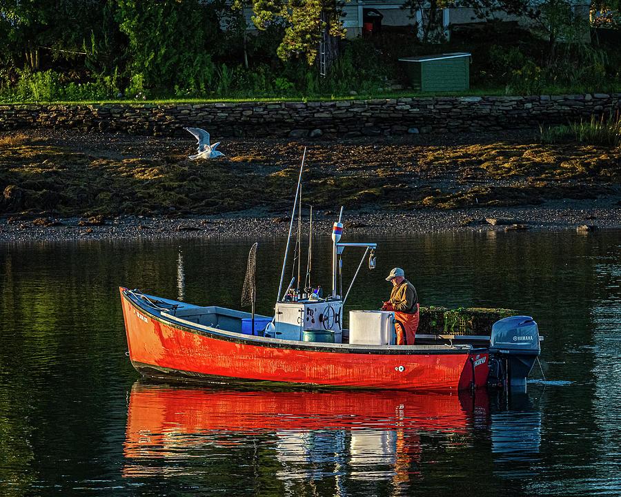 Lobsterman by Ray Silva