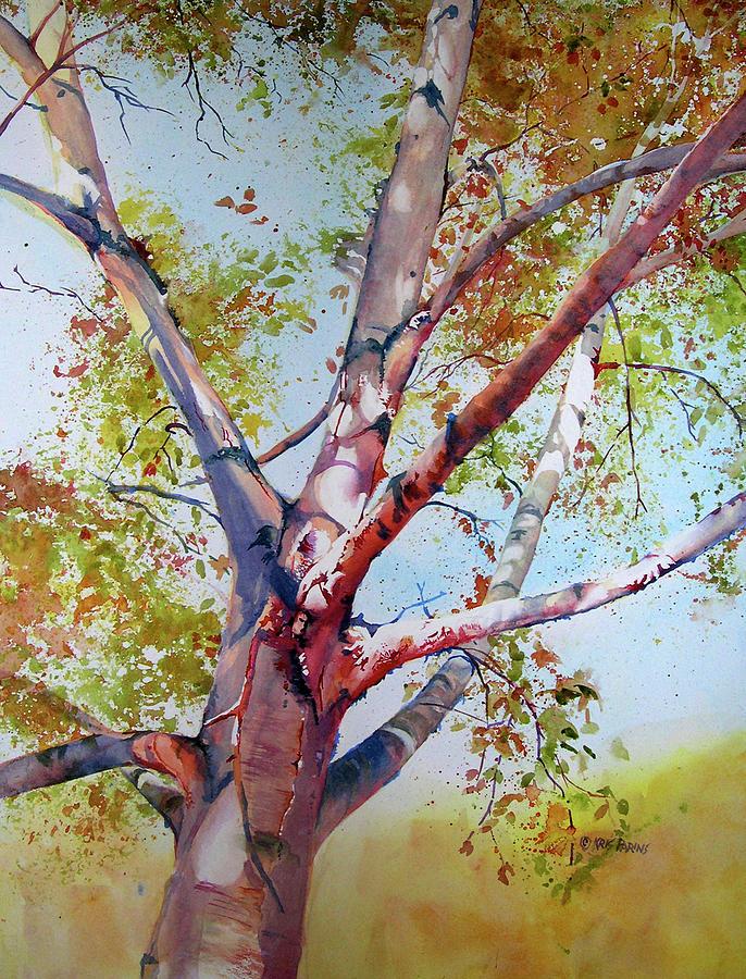 Local Color by Kris Parins