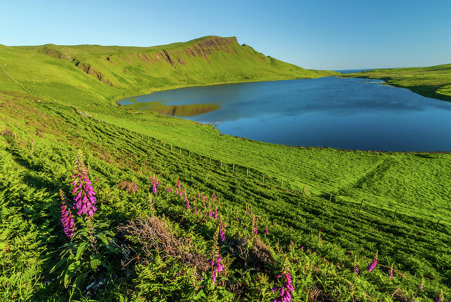 Britain Photograph - Loch Mor, Glendale, Skye by David Ross