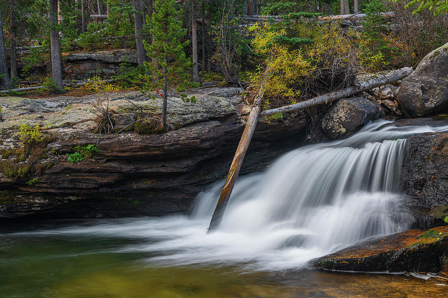 Log in Copeland Falls by Gary Lengyel