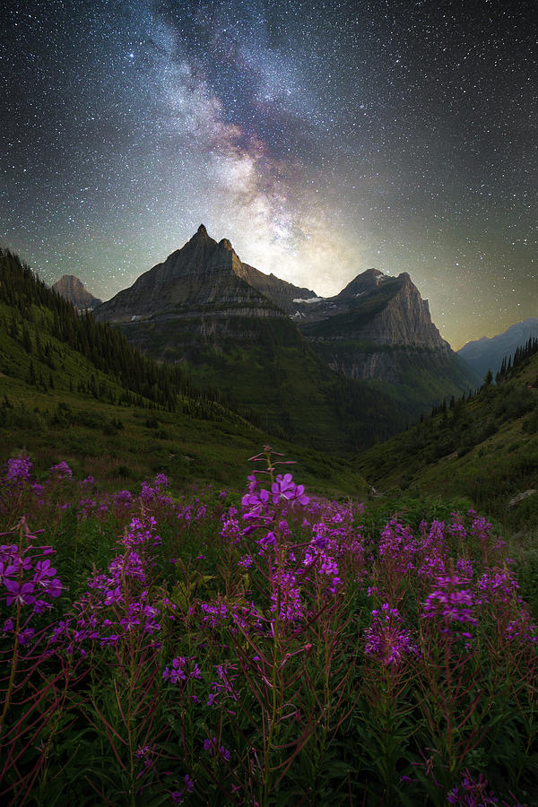 Logan Pass Milky Way / Glacier National Park  by Nicholas Parker