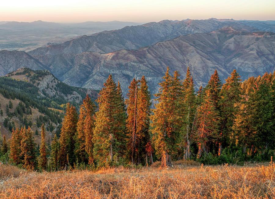 Logan Peak Sunset View by Roderick Bley
