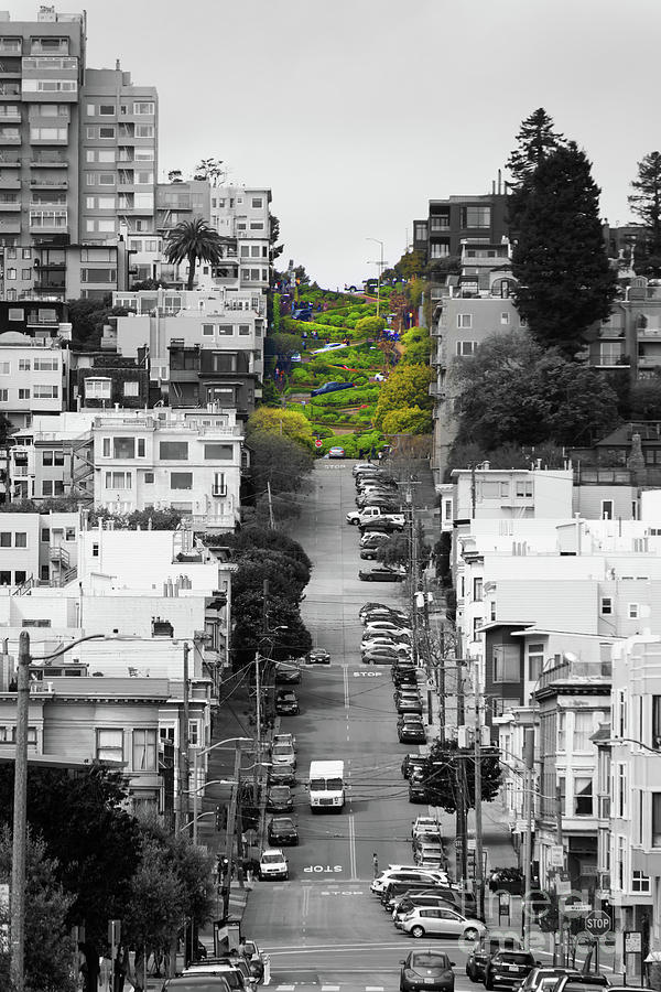Lombard Street San Francisco Crookedest Street In America R164 bw by Wingsdomain Art and Photography