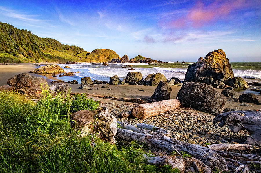 Lone Ranch Beach by Carolyn Derstine