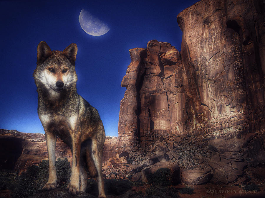 Lone Wolf by Brenda Wilcox aka Wildeyed n Wicked