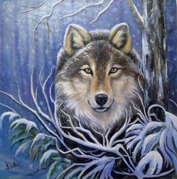 Wolf Painting - Lone Wolf by Janet Silkoff