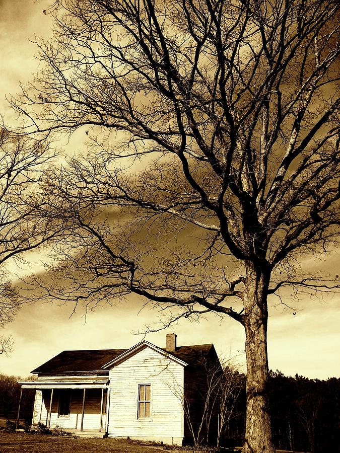 Lonely House by Sarah Hanley