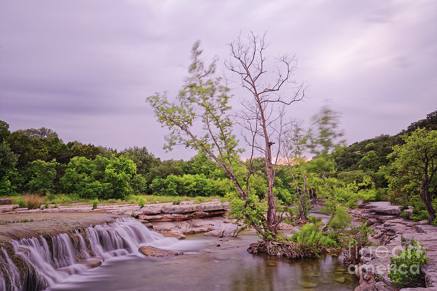 Long Exposure Photograph of Link Falls at Lower Bull Creek Greenbelt in Austin - Texas Hill Country by Silvio Ligutti