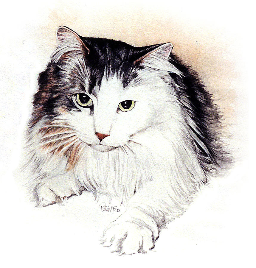 Long Haired Kitty by Patrice Clarkson