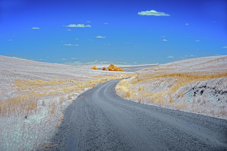 Long Road in Palouse by Jon Glaser