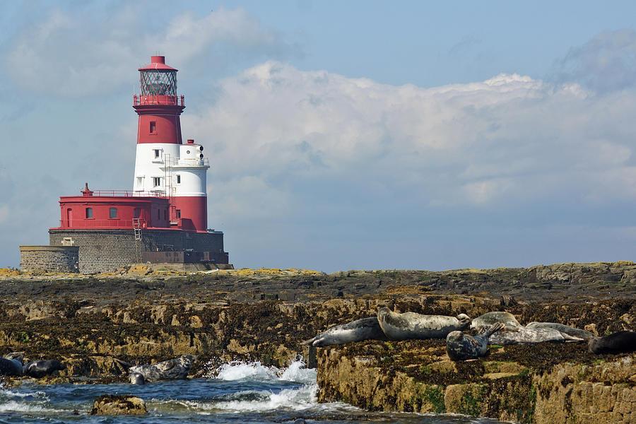 Longstone Lighthouse, Northumberland by David Birchall