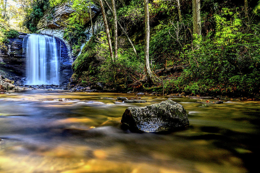Looking Glass Falls 2 by Brian Cole