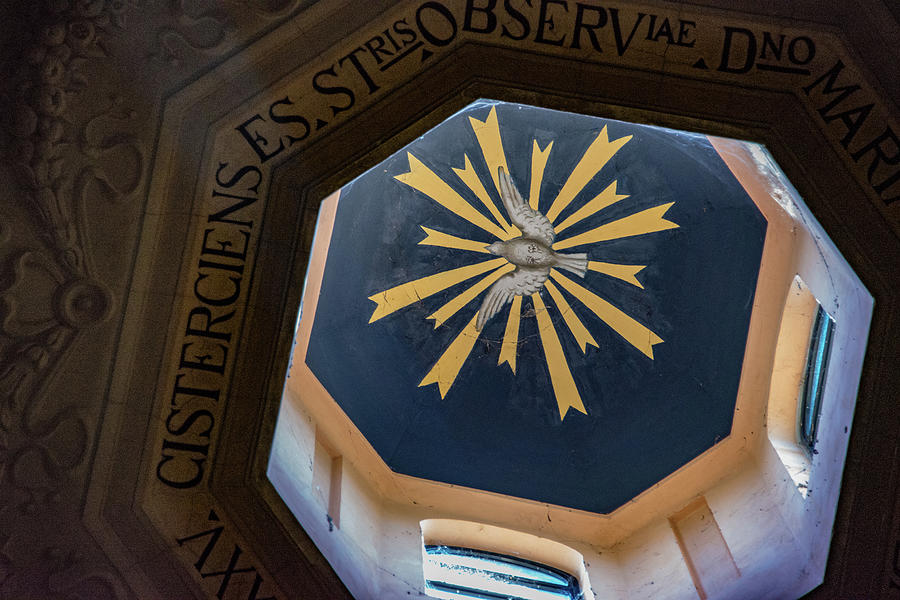 Emperor Constantine Photograph - Looking Up by Joseph Yarbrough